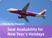 New Year's seat availability